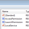 Citrix Workerstation Agent App COM Server - empty binary values AccessPermission and LaunchPermission