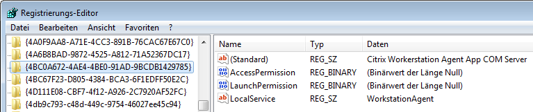 Citrix Workerstation Agent App COM Server - empty binary values AccessPermission and LaunchPermission