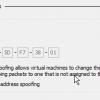 Hyper-V MAC Address spoofing